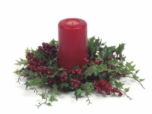 5468d3c859bc005b7f1bdb1ad8d36ac4--holly-berries-red-berries