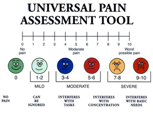 pain-scale
